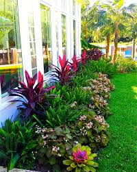 Small Picture Best 20 Florida gardening ideas on Pinterest Florida