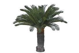 <b>Cycas palm</b>, <b>artificial plant</b> Götessons