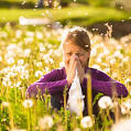 Images & Illustrations of allergy