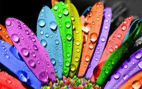 استمتع بالالوان images?q=tbn:ANd9GcQ