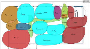 bubble diagrams for design demonstrates interior planning methodsoffice bubble diagram