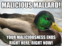 Malicious mallard! your maliciousness ends right here, right now ... via Relatably.com