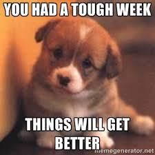 you had a tough week things will get better - cute puppy | Meme ... via Relatably.com