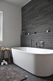 glass bathroom feature wall contemporary
