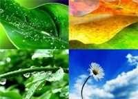 link to descriptive essay on nature descriptive essays on nature   sbc descriptive essay on nature   deckstarter