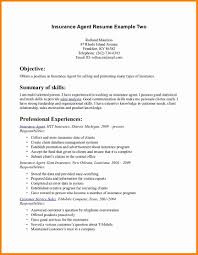 insurance agent resume sample budget template insurance agent resume sample insurance agent resume example two page 1 jpg