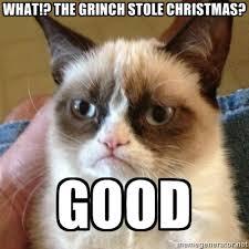 Memes Vault Christmas Cat Memes via Relatably.com