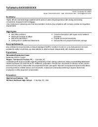 Technical Pre Sales Resume   Sales   Sales   Lewesmr