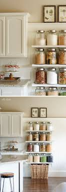 horse kitchen canister