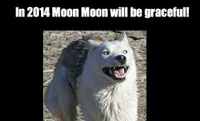 In 2014 Moon Moon Will Be Graceful! | WeKnowMemes via Relatably.com