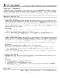 sample ceo resume  sample executive resume template  sample ceo    sample ceo resume  sample executive resume template