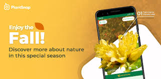 PlantSnap - FREE plant identifier app - Apps on Google Play