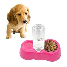Magenta <b>Cat Bowl</b> + <b>Drinking</b> Water Bowls with Automatic Water ...