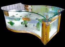 1000 images about unique aquariums on pinterest fish tanks aquarium and betta fish aquarium office