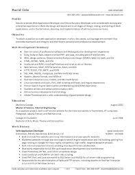 sample web designer resume objective shopgrat web designer developer resume sample work history sample web designer resume