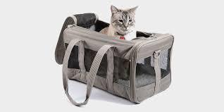 Best <b>cat</b> carriers in 2019: Sherpa, Necoichi, Petmate, and more ...