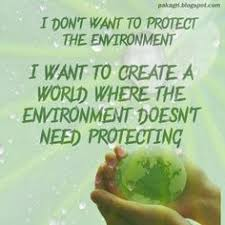 Quotes for work on Pinterest | Sustainability, Environment Quotes ...