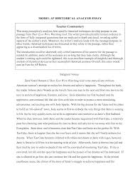 commentary essay sample our work sample essay work c concrete details and commentary by dfgh4bnmu