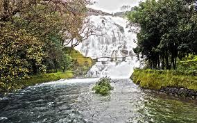 Pravara River