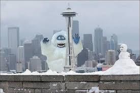 Image result for snowmageddon