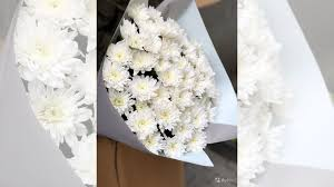 <b>Букет из кустовой</b> хризантемы купить в Санкт-Петербурге ...