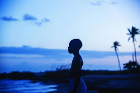 oscar winning moonlight to be screened at theatr mwldan in oscar winning moonlight to be screened at theatr mwldan in cardigan from western telegraph