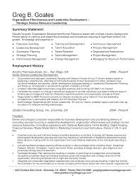 summary statement examples sample resume summary  seangarrette cosummary statement examples