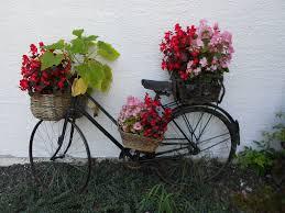 """Résultat de recherche d'images pour """"vélos fleuris"""""""