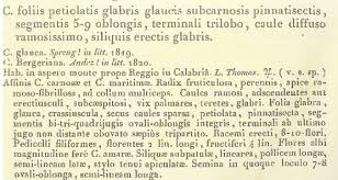 The first official description of Cardamine glauca by Augustin ...