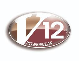 Image result for v12 safety boots logo