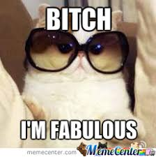 Fabulous Cat Is Fabulous by bizboy16 - Meme Center via Relatably.com