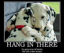 Hang In There Quotes. QuotesGram via Relatably.com