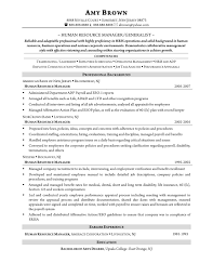 accounting generalist resume resume builder