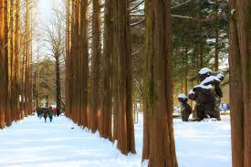 Image result for nami island