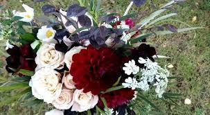 Drissia - <b>Le bouquet de</b> Cécile   Facebook