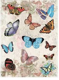"""Рисовая <b>бумага для декупажа Craft</b> Premier """"Мир бабочек"""", А3"""