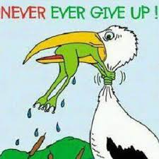 Image result for pictures of never giving up