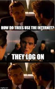 Plant-ception #meme #inception #trees #internet | Inception ... via Relatably.com
