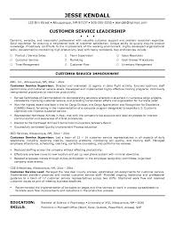 Objective Examples for Resume Customer Service
