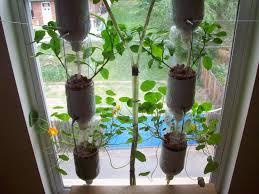 Kitchen Windowsill Herb Garden Kitchen Windowsill Herb Garden Garden Design Ideas