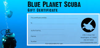 holiday gift guide blue planet s blue planet gift certificate