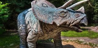 Big bang theory: how did <b>dinosaurs</b> have sex?
