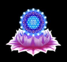 Resultado de imagem para IMAGENS DE YANTRAS lotus