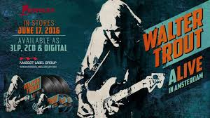 <b>Walter Trout</b> - Alive In Amsterdam! - YouTube
