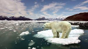 it s almost definitely too late to save our planet from it s almost definitely too late to save our planet from catastrophic climate change