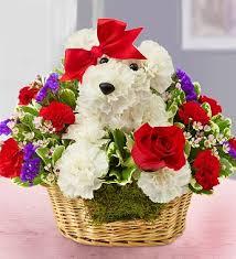 a-<b>DOG</b>-able | <b>Dog Flowers</b> & Gifts for <b>Dog</b> Lovers | 1800Flowers