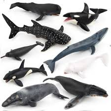 Collection Home <b>Kids Wild</b> Ocean Educational <b>Simulation</b> Whales ...