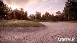 Image result for rory mcilroy pga tour ea sports