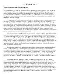 paragraph essay order Amazing personal statement   SEC LINE Temizlik