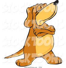 Έχει και ο σκύλος το ζωώδιο του (α' μέρος)!